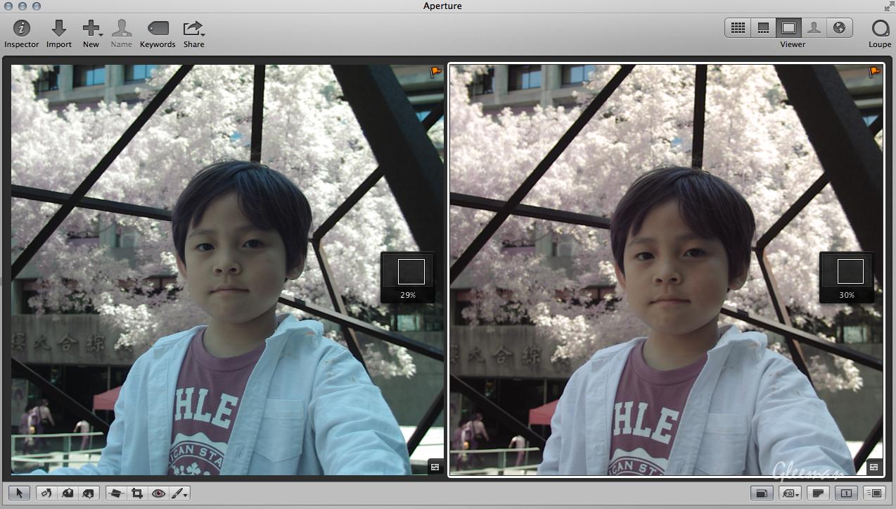 彩色紅外線攝影 (Pentax K5 Color IR Photography)