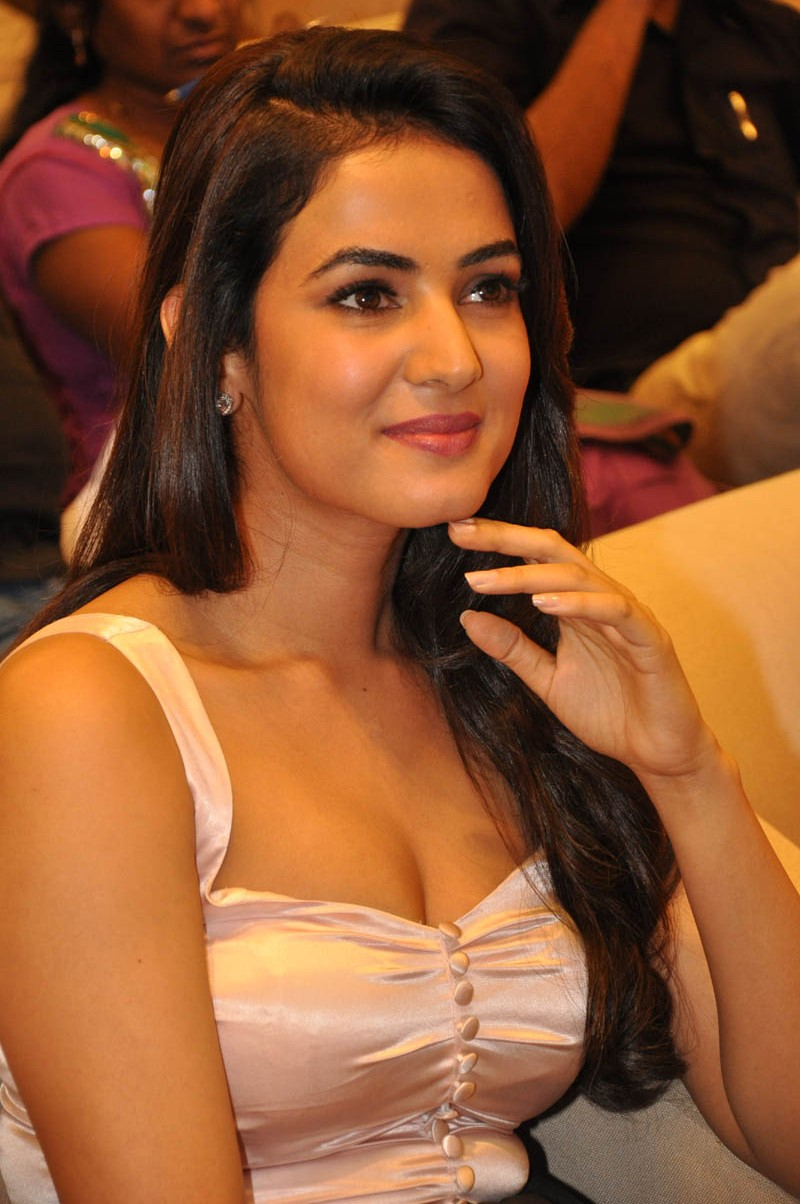 Sonal chauhan Biography, Height, weight, Age &amp- hot wallpaper