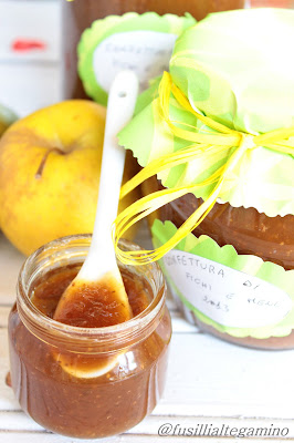 marmellata di fichi e mele e blog in vacanza