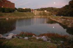 7. Pond at University of Tennessee Hospital. Cherokee Trail