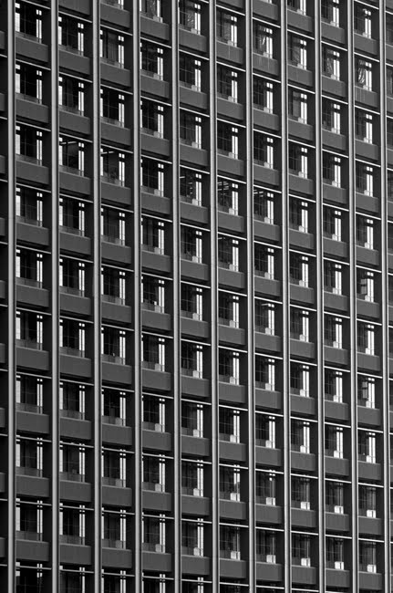 Office Building Rows of Windows