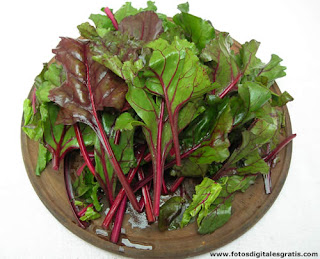 comida natural,alimentacion saludable,cocina naturista,verduras,organica