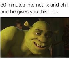 "Compilation Of The Best ""Netflix And Chill"" Memes On The Internet!"