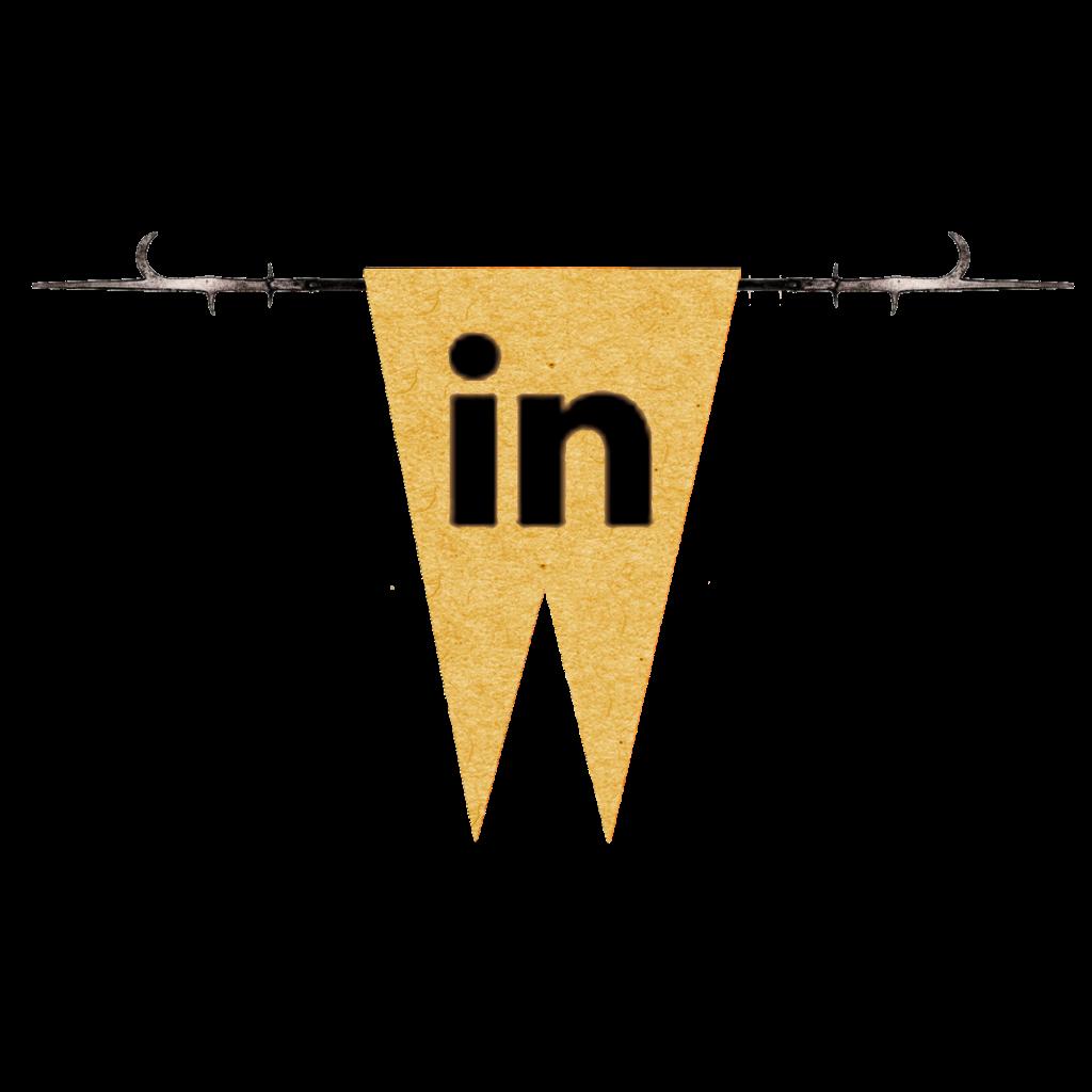 Mi LinkedIn