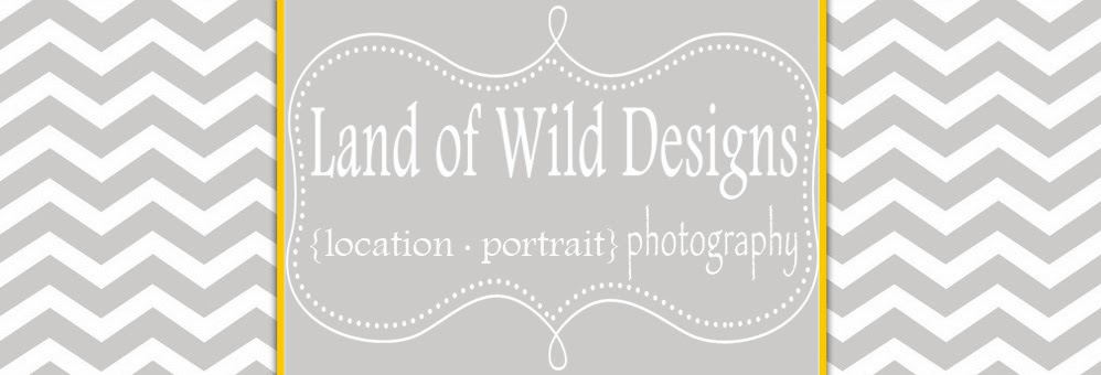 Land of Wild Designs