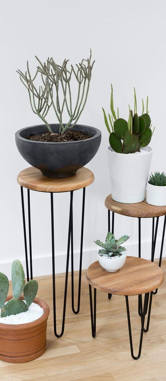 Mis plantas en un pedestal mi casa es feng - Pedestal para plantas ...
