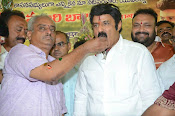 Balakrishna Birthday Celebrations-thumbnail-14