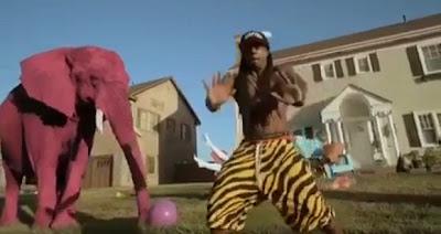 Foto do Lil Wayne com o elefante rosa