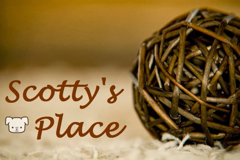 Scotty's Place