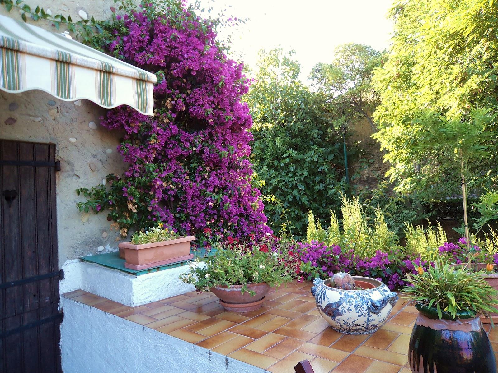 Il giardino sfumato for Piccoli giardini privati