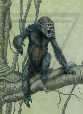 primates en la españa prehistorica Pierolapithecus