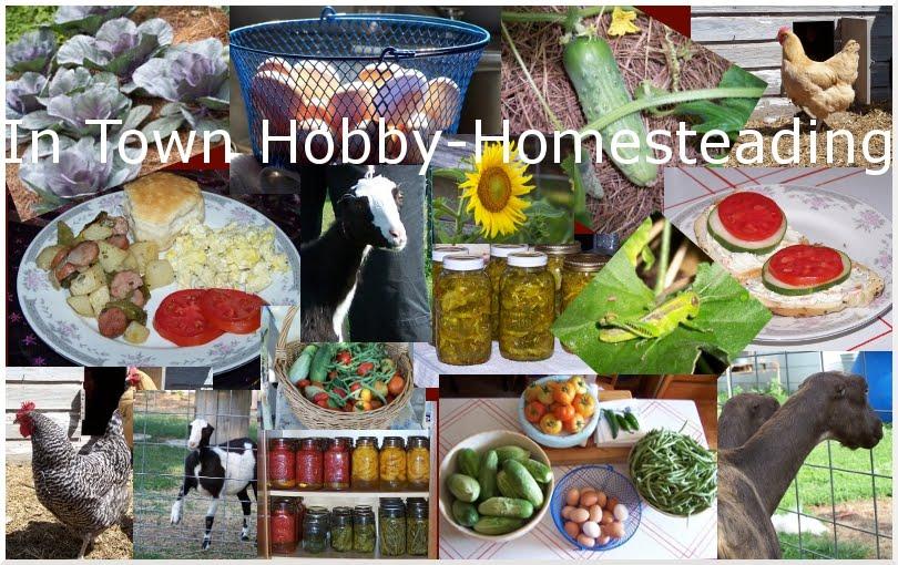 Hobby-Homesteading
