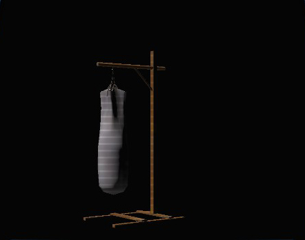 Dojo Punching Bag preview