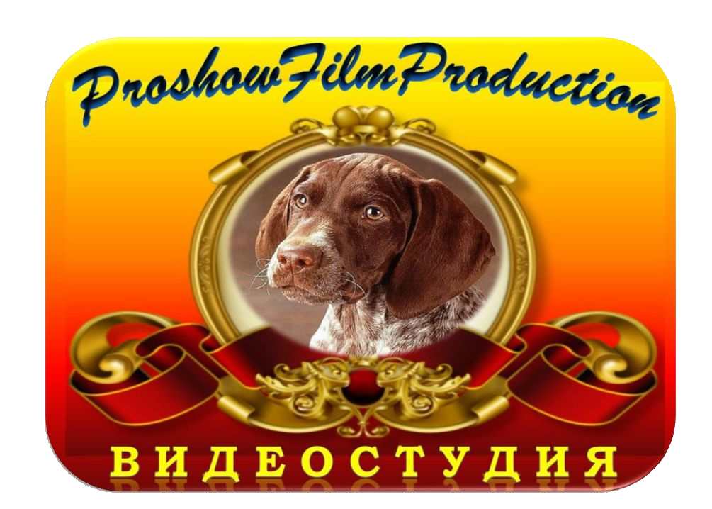 Студия ProshowFilm Production