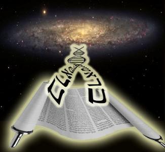 DNA Code: