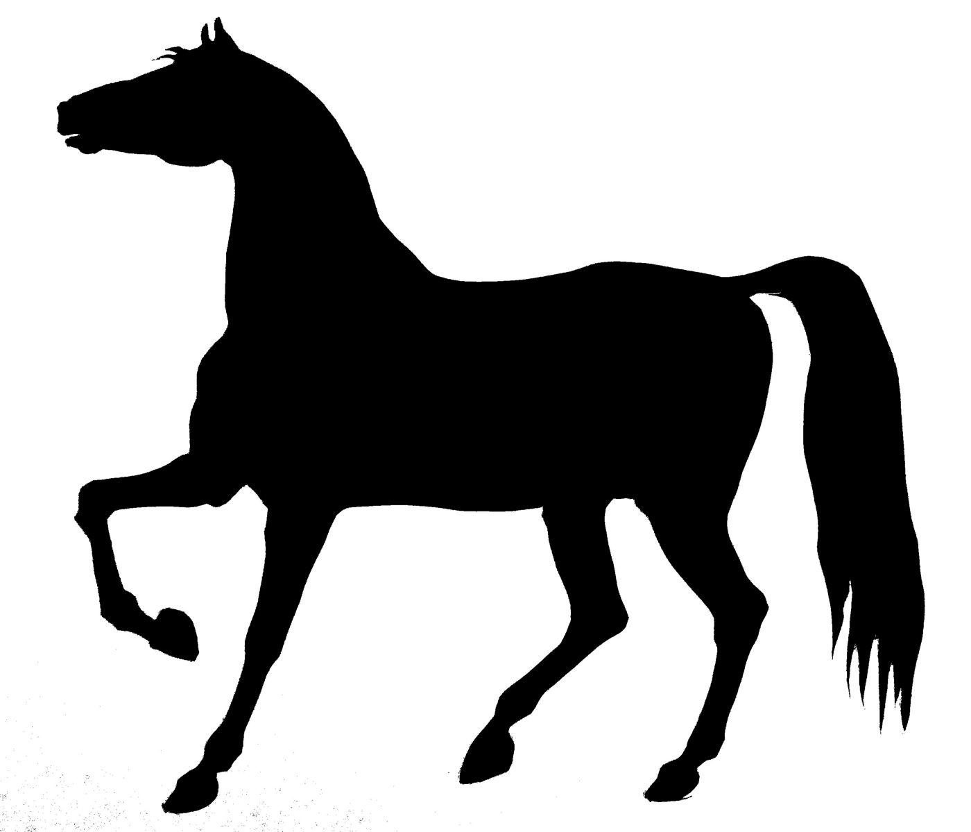 Bucking Horse Images Stock Photos amp Vectors  Shutterstock