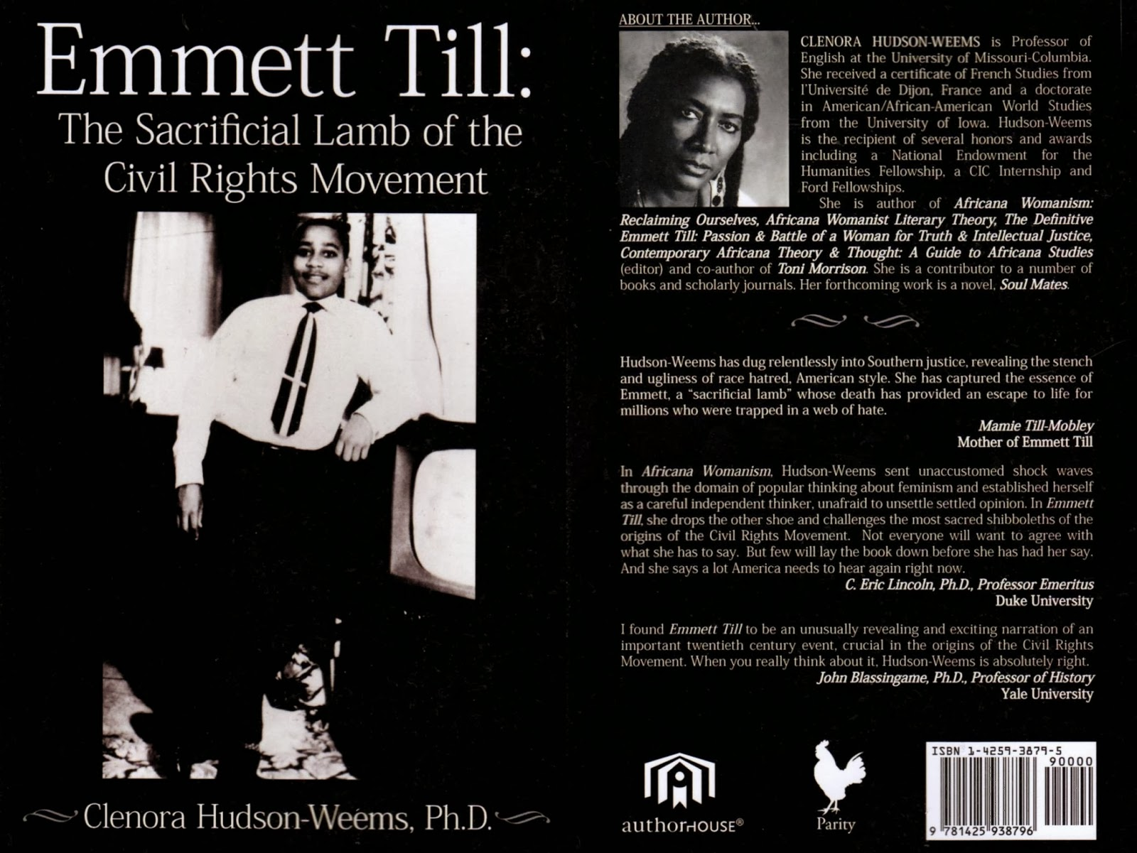 emmett till and song of solomon essay