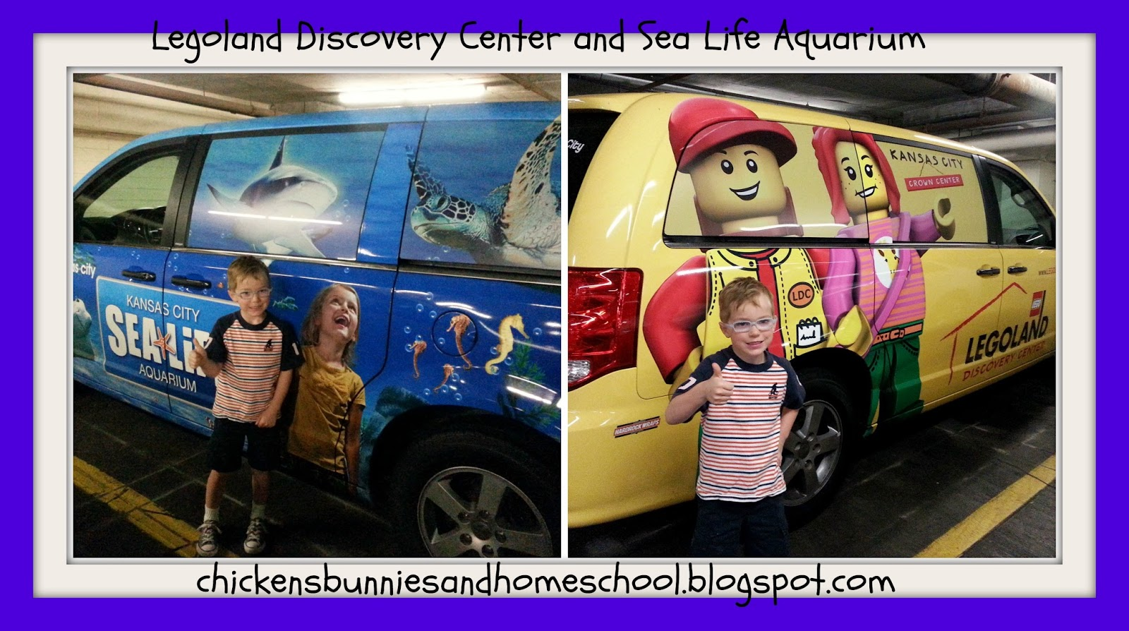 Chickens Bunnies And Homeschool Legoland Discovery
