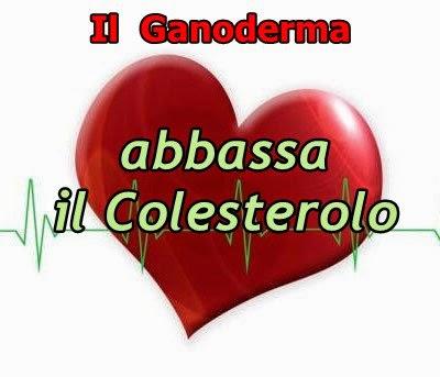 ganoderma abbassa il colesterolo