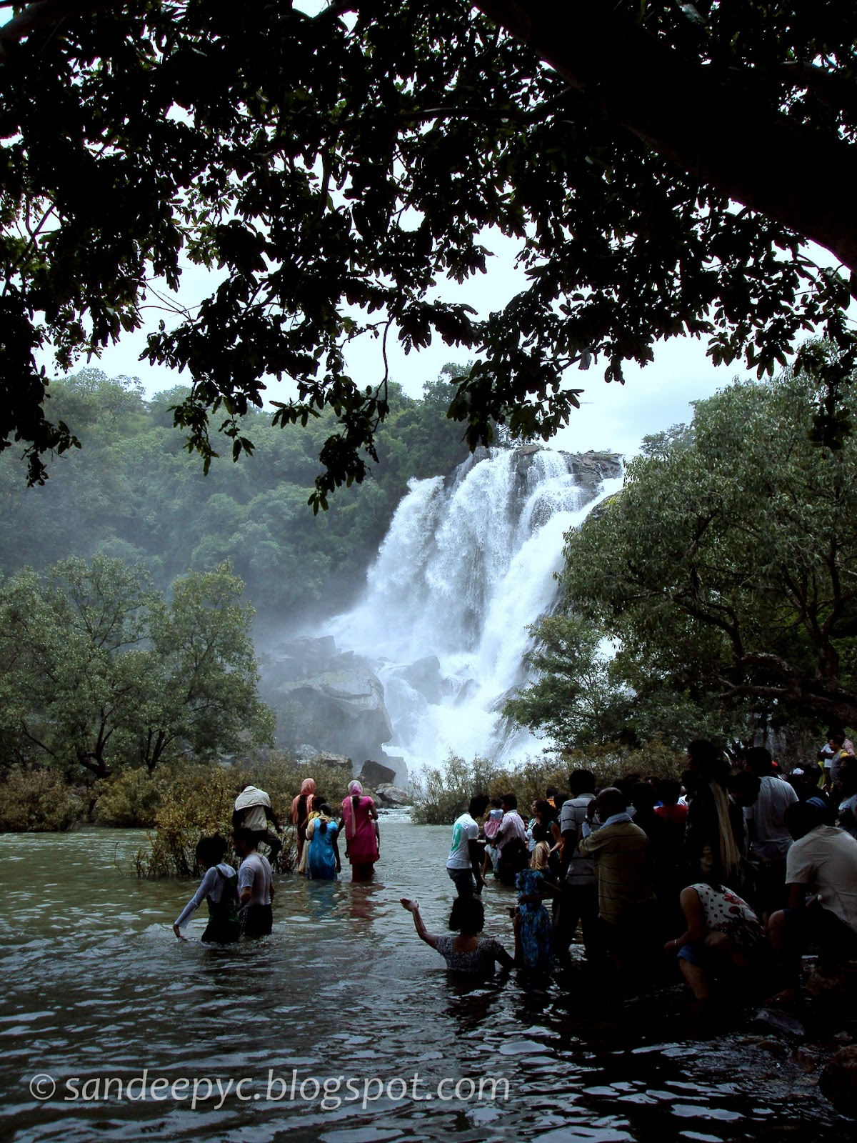 Bharachukki falls