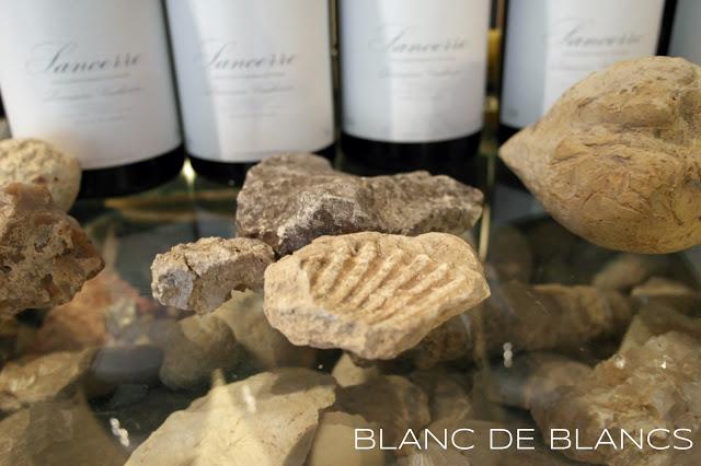Mineraalisuus viinissä - www.blancdeblancs.fi