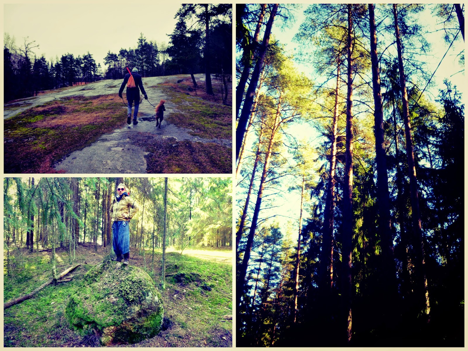 helsinki forest