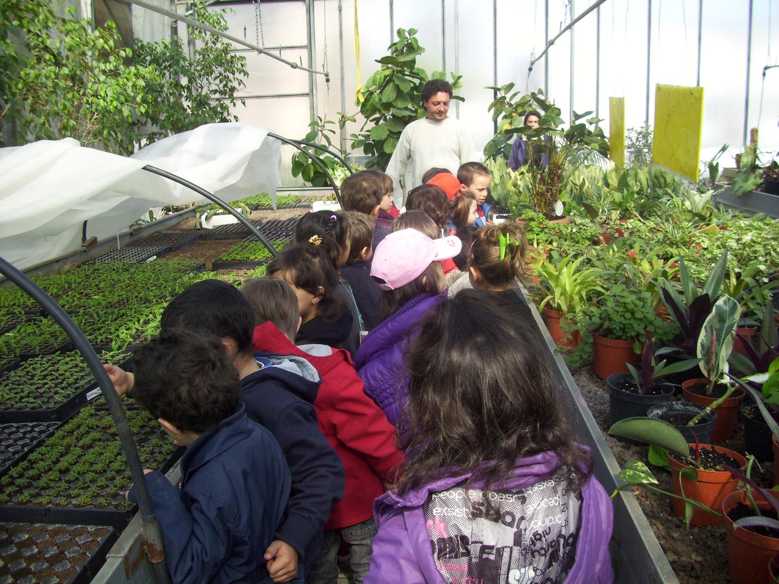 scuola gallini voghera lombardy - photo#10