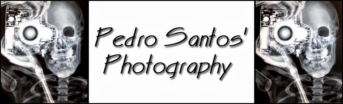 Pedro Santos' Photography