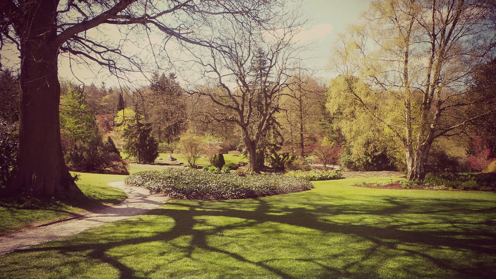 Harrogate gardens