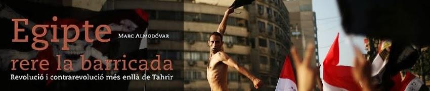 Egipte rera la barricada - Egipto tras la barricada