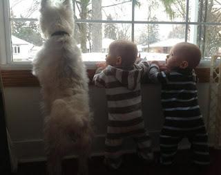 Babies mit Hund am Fenster