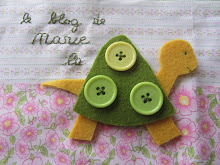 My little Turtle's blog !