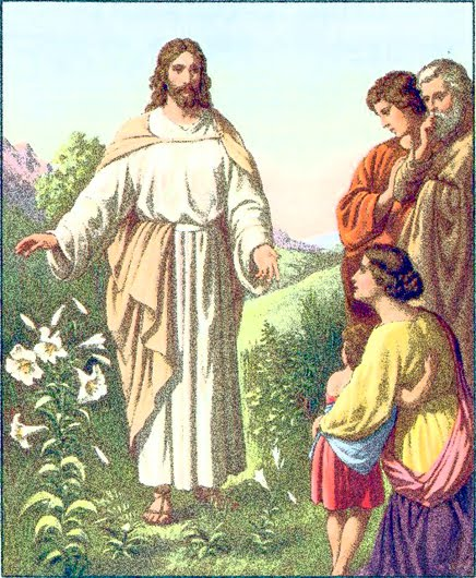 Eighth Sunday in Ordinary Time