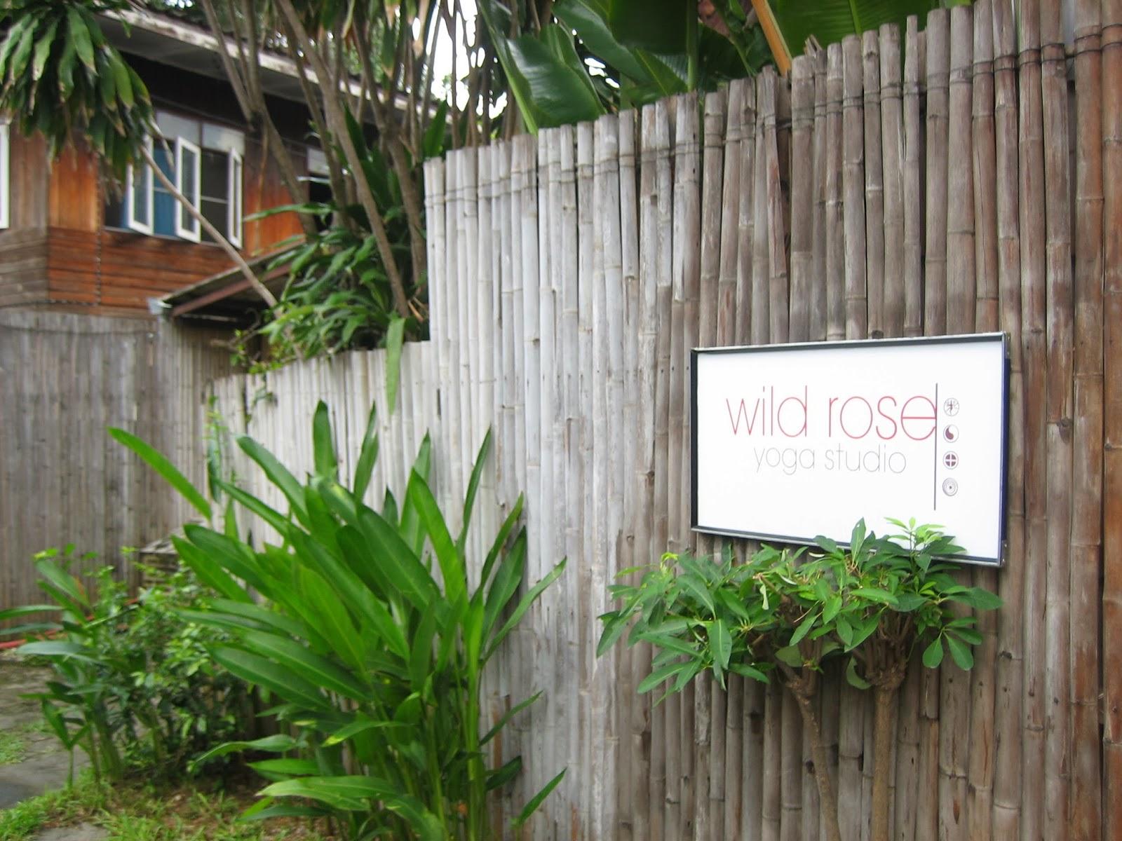 wild-rose-yoga-chiang-mai