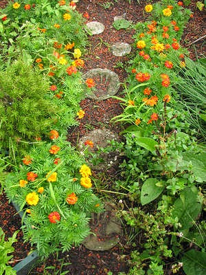 Ideas for an Easy and Creative Garden Walkway