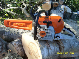 Puunkaadot pihoissa ja puutarhoissa pensasaitojen leikkaukset käteisellä kotitalousvähennysoikeus