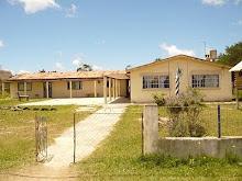 Escuela 61