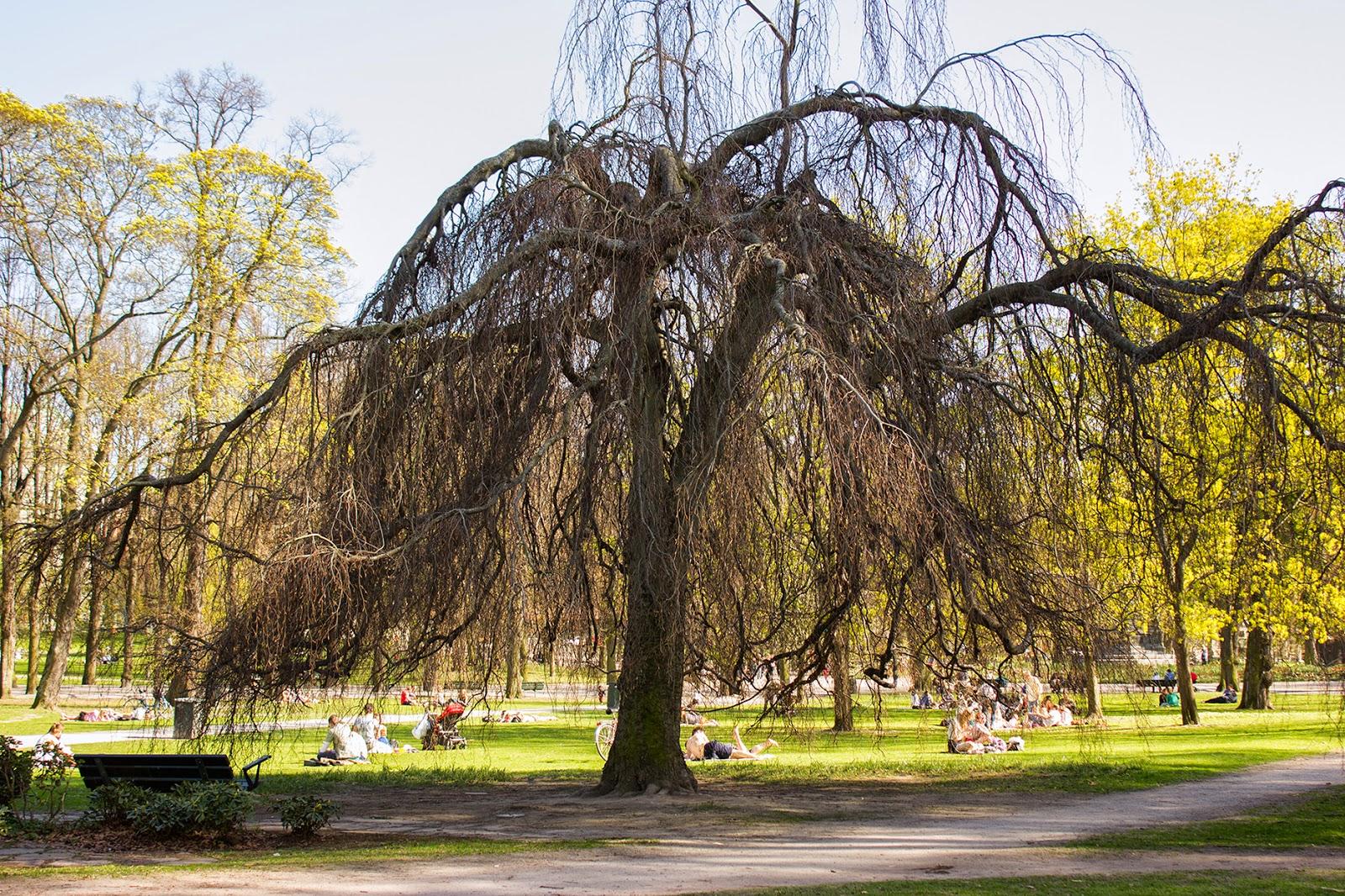 Парки Стокгольма