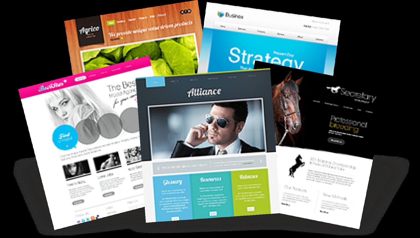 empresas de seo y web