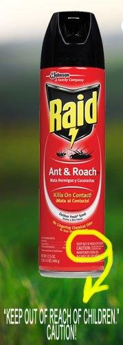 Matar as los piojos con spray insecticida descubre - Como matar las moscas de mi casa ...