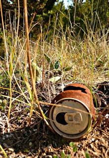 El jard n del l pulo el blog de cerveza batallitas mi for El jardin del lupulo