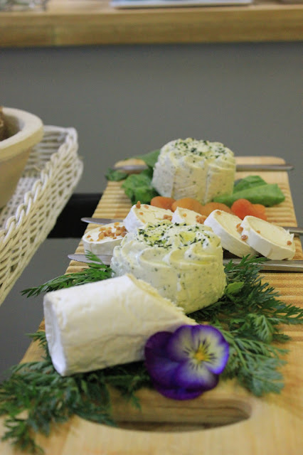 angulo queso