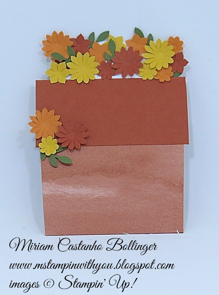 PP 212, Miriam Castanho Bollinger, #mstampinwithyou, stampin up, demonstrator, pp, color me autumn dsp, boho blossoms, su