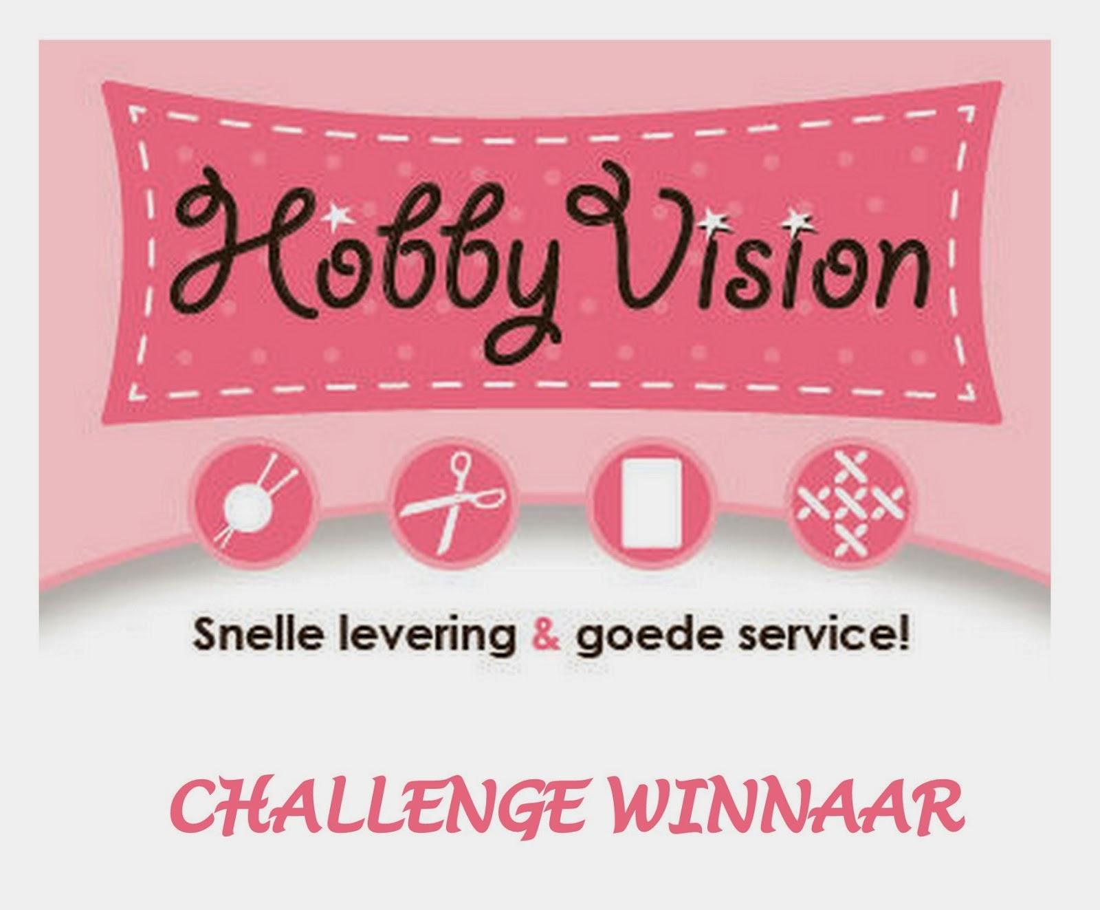 Winnaar bij Hobbyvision