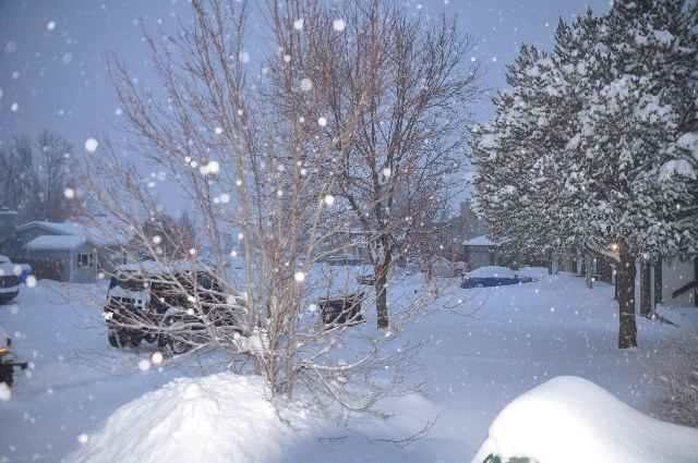 Colorado Springs blizzard coloradoviews.filminspector.com