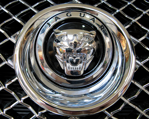 world of cars jaguar logo