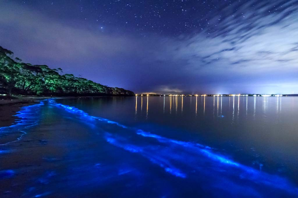 Most Unusual Beaches Around The World Travel Experience - Maldive island beach glow