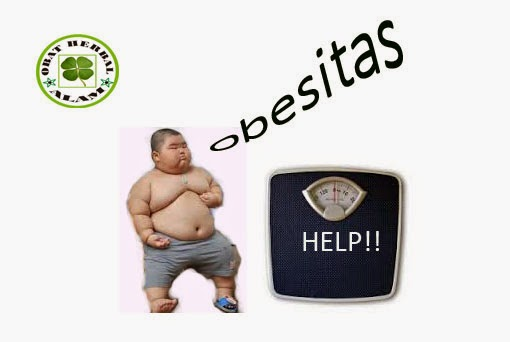 Cara Diet Obesitas Yang Baik