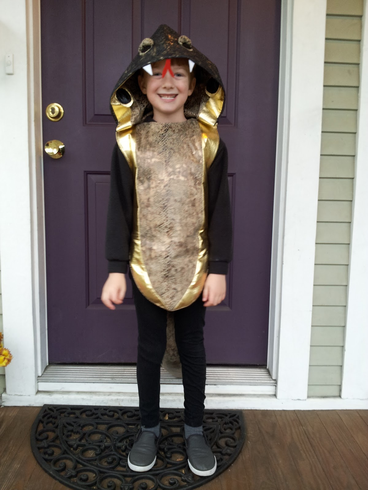 Stumbles & Stitches: Halloween Costumes: King Cobra and ...