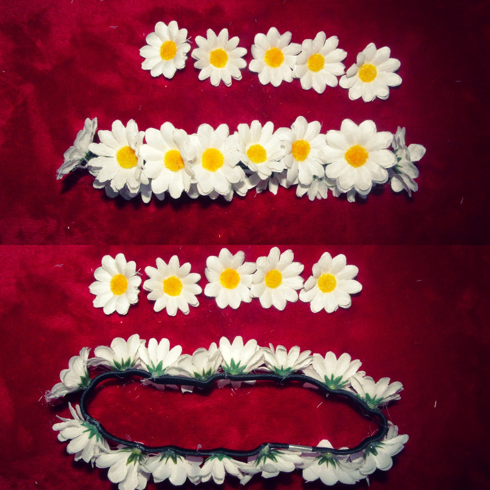 how to keep cut everlasting daisies